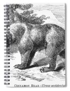 Cinnamon Bear Spiral Notebook