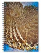 City Blocks Spiral Notebook