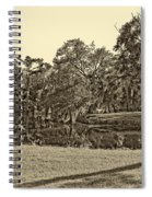 City Park Lagoon Sepia Spiral Notebook