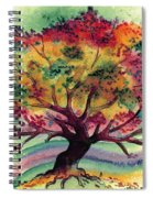 Clad In Color Spiral Notebook
