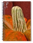 Classic Halloween Spiral Notebook