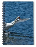 Clean Landing Spiral Notebook