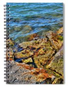 Clear Calm Collective  Spiral Notebook