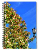 Clear Skies Spiral Notebook
