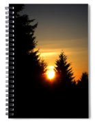 Clearing The Trees In The Morning Spiral Notebook