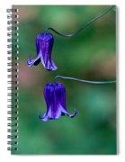 Clematis Integrifolia Rooguchi 2 Spiral Notebook