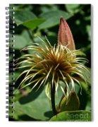 Clematis Mop Spiral Notebook
