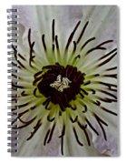 Clematis Stamen Spiral Notebook