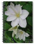 Clematis Trio  Spiral Notebook