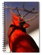 Click Spiral Notebook