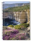 Cliffs Along Ocean With Wildflowers Spiral Notebook