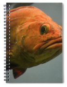 Close And Fishy Spiral Notebook