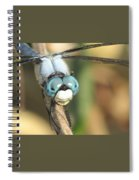 Close Up Blue Eyes Spiral Notebook
