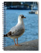 Close Up Of A Tern Next To The Thames And London Eye Spiral Notebook