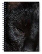 Close-up Of Satin Spiral Notebook