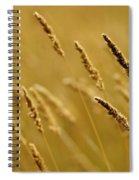 Close-up Of Wheat Spiral Notebook