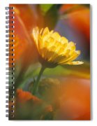Close-up Of Wildflower Spiral Notebook