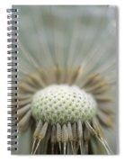 Closeup Of Dandelion Seed Head Spiral Notebook