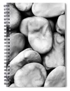 Closeup Of Fava Beans Spiral Notebook