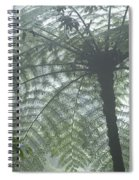 Cloud Forest Ceiling, Costa Rica Spiral Notebook
