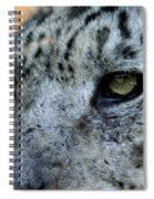 Clouded Leopard Face Spiral Notebook