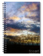 Cloudy Sunset With Bare Trees And Birds Flying Spiral Notebook