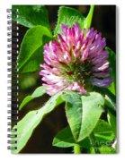 Clover Blossom Day Spiral Notebook