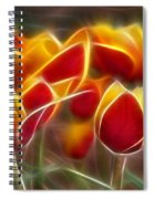 Cluisiana Tulips Fractal Spiral Notebook