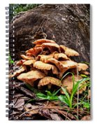 Cluster Fungus Spiral Notebook