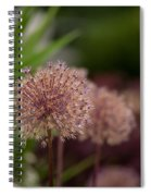 Cluster Of Beauty Spiral Notebook