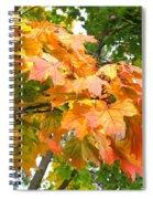 Cluster Of Color Spiral Notebook