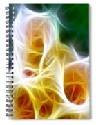 Cluster Of Gladiolas Triptych Panel 1 Spiral Notebook
