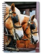 Clydesdale Closeup Spiral Notebook