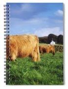 Co Antrim, Ireland Highland Cattle Spiral Notebook