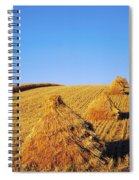 Co Down, Ireland Oats Spiral Notebook