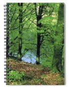 Co Kerry, Standing Stone On Clogher Spiral Notebook