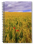Co Waterford, Ireland Poppies In A Spiral Notebook