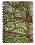 Coast Live Oak Spiral Notebook