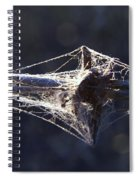 Cobwebs And Wire Spiral Notebook