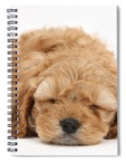 Cockapoo Pup Spiral Notebook