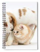 Cocker Spaniel And Kitten Spiral Notebook