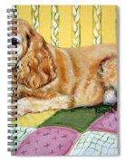 Cocker Spaniel On Quilt Spiral Notebook