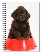 Cocker Spaniel Pup In Doggy Dish Spiral Notebook