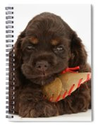 Cocker Spaniel Pup With Chew Treat Spiral Notebook