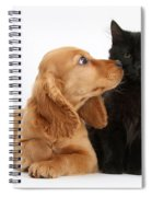 Cocker Spaniel Puppy And Maine Coon Spiral Notebook