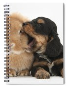 Cockerpoo Pup And Lionhead-lop Rabbit Spiral Notebook