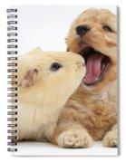 Cockerpoo Puppy And Guinea Pig Spiral Notebook