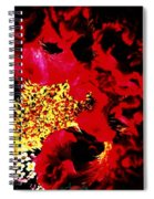 Cockscomb Seed Head Spiral Notebook