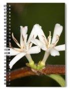 Coffee Flowers Spiral Notebook