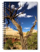 Cohab Canyon At Capitol Reef Spiral Notebook